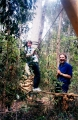 Low_Ropes
